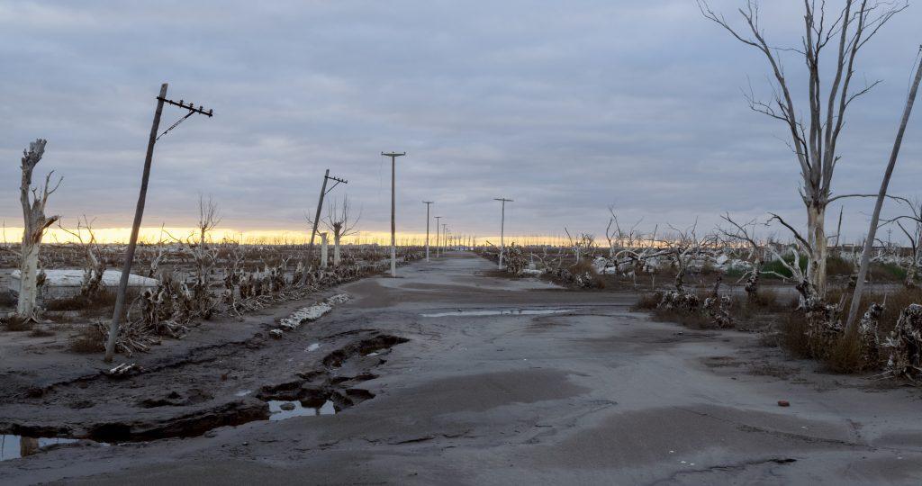 The desolate landscape captured in Homo Sapiens